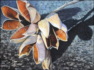 Yucca Pods, Monotype - oil on paper